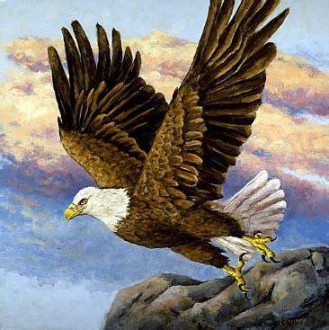 eagle paintings bald eagle  flight painting nature