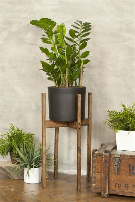 rustic wooden plant display stand cm tall indoor side