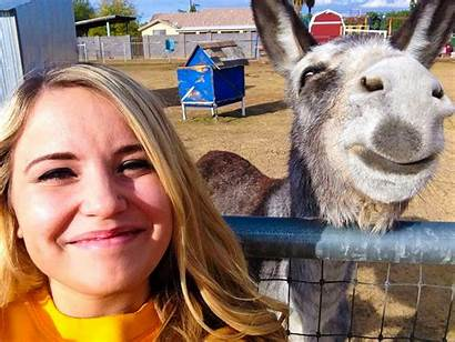 Funny Animals Smiling Donkey January Photobomb Animal