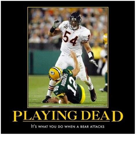Anti Packer Memes - bears fan anti green bay memes gay bay packers pinterest bays fans and green