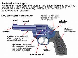 Trigger Trainers Firearms Training