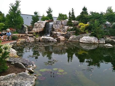 Pond Aquascape by Hometalk World S Most Ecosystem Fish Pond