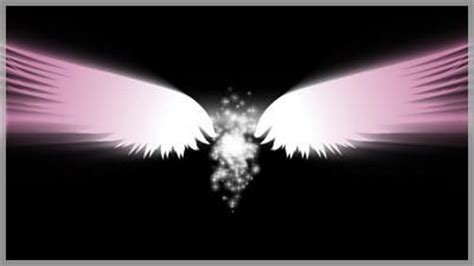 angel wings pink transition choice