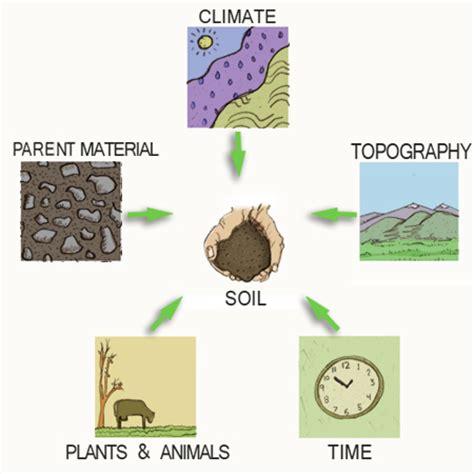 menoa kenyalang how is soil formed