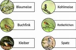 Vögel Im Winter Kindergarten : demenzzeitungen und dementenzeitungen f r senioren mit ~ Whattoseeinmadrid.com Haus und Dekorationen