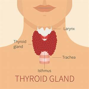 Minor Thyroid Symptoms Could Signify Something More