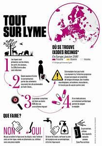 Comment Enlever Un Tique : maladie de lyme comment s 39 en prot ger la diagnostiquer ~ Melissatoandfro.com Idées de Décoration