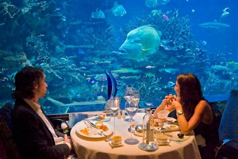 top 5 underwater restaurants of the world you definitely need to dine in traveltourxp