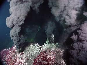 Black Smokers - The Biogeologist
