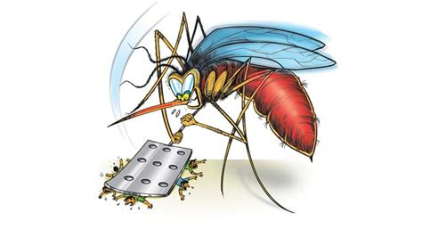 dengue malaria cases  bmc collects rs lakh  fines
