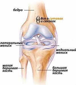 Народные средства от артроза в колене