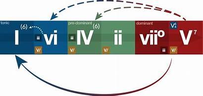 Harmony Functional Chart Major Diatonic Aoc Composer