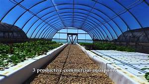 Commercial Aquaponics Farm For Sale In Milam County  Texas