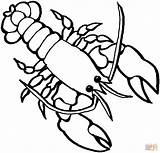 Lobster Coloring Pages Getcoloringpages Printable Cartoon sketch template