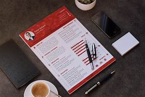 professional templates 33 infographic resume templates free sample example