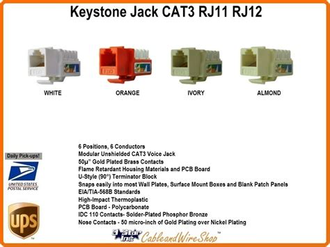 Cat Keystone Voice Jack Almond Star