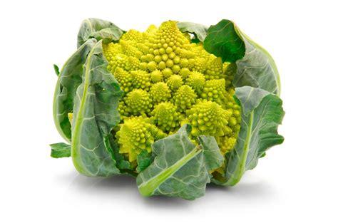come si cucina il cavolfiore romanesco minestra di broccolo e arzilla capriccio di mare