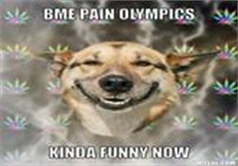 Stoner Dog Meme Generator - bme pain olympics know your meme