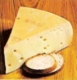 samso cheese suppliers pictures product info
