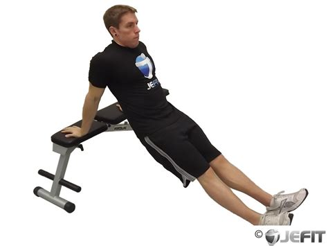 Bench Dips Workout by Single Bench Dip Exercise Database Jefit Best