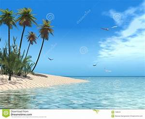 Tropical beach stock illustration. Image of blue, panorama ...