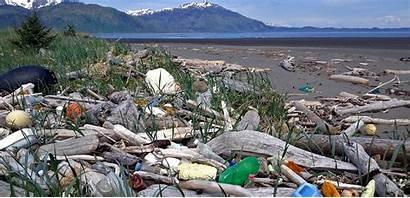 Tsunami Debris Alaska Marine Trash Island Magazine