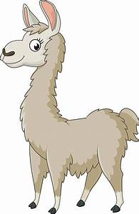 Alpaca Clip Art, Vector Images & Illustrations - iStock