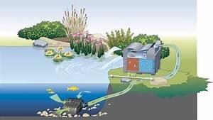 Pumpe Für Bachlauf : gartenteich braun gmbh filter und bachlauf pumpen ~ Michelbontemps.com Haus und Dekorationen