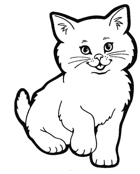 draw  cute realistic cat cartoon face step  step
