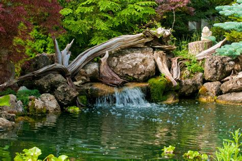 whole house filter 67 cool backyard pond design ideas digsdigs