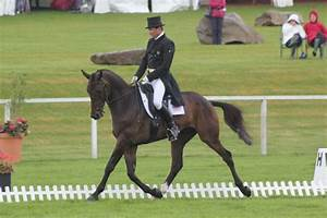 mystery whisper | Eventing Nation - Three-Day Eventing ...