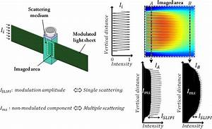 llustration of a spatially modulated light sheet crossing ...