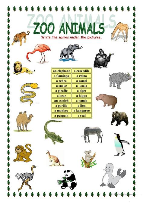 zoo animals worksheet free esl printable worksheets made