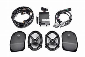 Harley Rear Speaker Wiring Harness  Wiring  Wiring Diagram