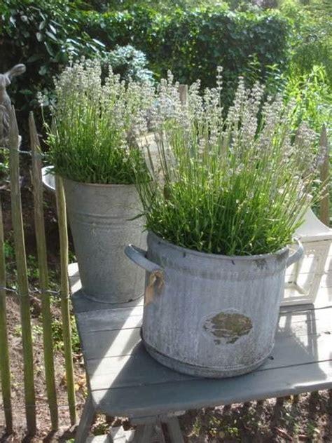 pot de fleur zinc 23 creative ways of using buckets in interior and exterior d 233 cor
