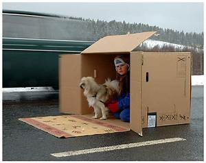 Living In A Box : living in a cardboard box in the middle of the road by motocycleboi dpchallenge ~ Eleganceandgraceweddings.com Haus und Dekorationen