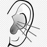 Clipart Ear Line Webstockreview Ears Clip sketch template