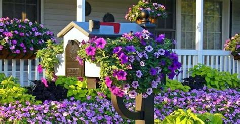 Ask Wet & Forget Boost Your Curb Appeal With These 5 Fun Mailbox Decorating Ideas Easy Diy Outdoor Patio Ideas Paper Flower Wall Backdrop Real Grass Dog Potty Box Powder Coat Oven Insulation Best Protein Treatment For Natural Hair Growth Disney Rapunzel Costume Free Standing Garage Shelving