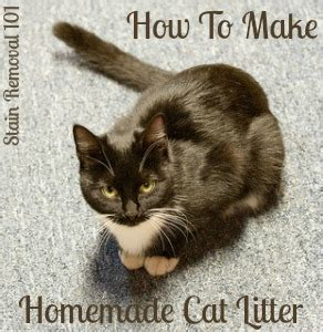 homemade cat litter instructions