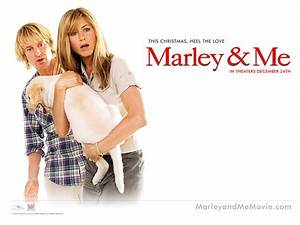 Marley And Me 2008 images Wallpaper HD wallpaper and ...