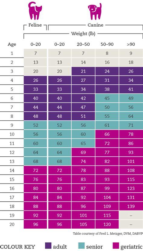 kitten growth chart  poundsview site kitten age weight chart gallery labrador growth chart