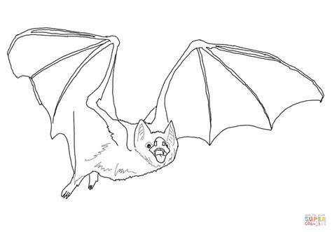 Vampire Bat Pages Coloring Pages