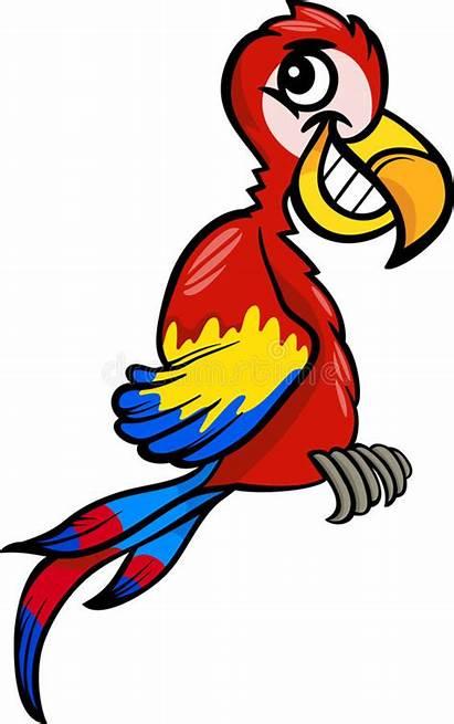 Clip Cartoon Macaw Illustrazione Illustratie Fumetto Het