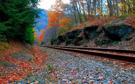 Fall Widescreen Beautiful Desktop Backgrounds