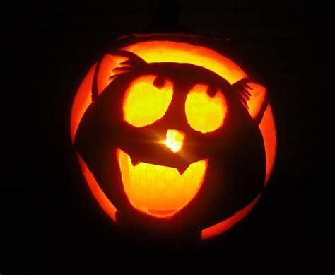easy pumpkin carving best 25 cat pumpkin carving ideas on pinterest pumpkin