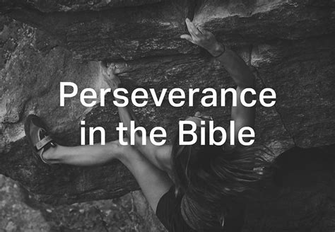 You can hover over the reference and you can check out the amplified before we start i wanted to share what the webster dictionary defines what perseverance means. perseverance in the bible