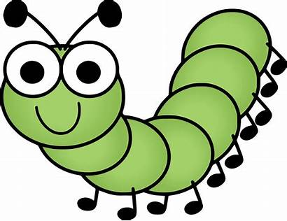 Caterpillar Caterpillars Insects Preschool Pngimg Learning Welcome