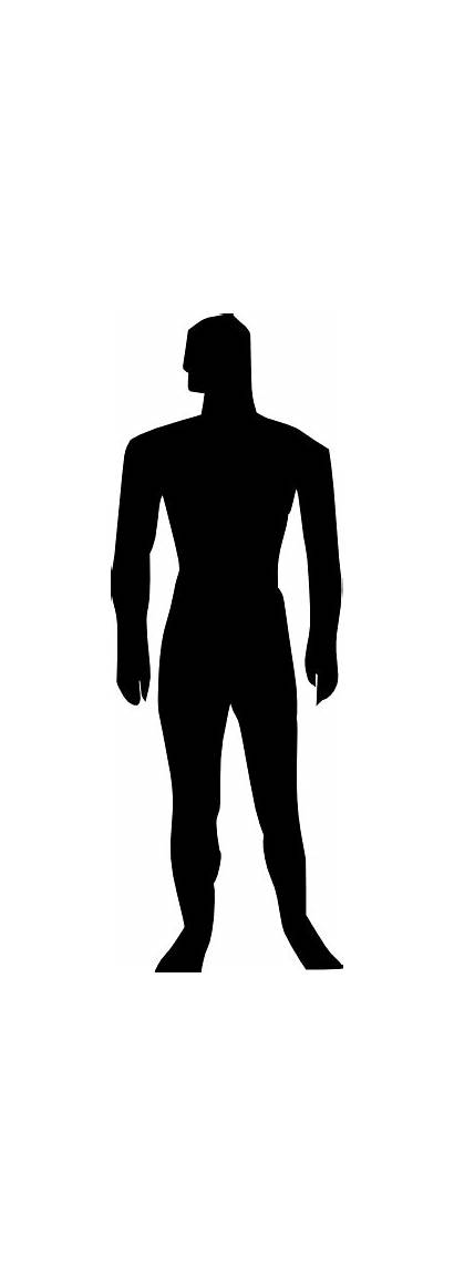 Human Silhouette Clip Outline Clipart Illustration Medical