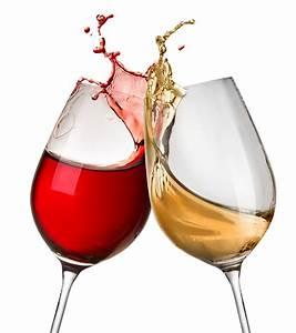 Cheers - Designer Splashbacks - Cameo Glass  Cheers