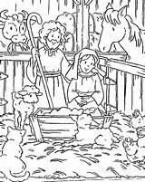 Jesus Coloring Bible Born Stable Animals Gather sketch template